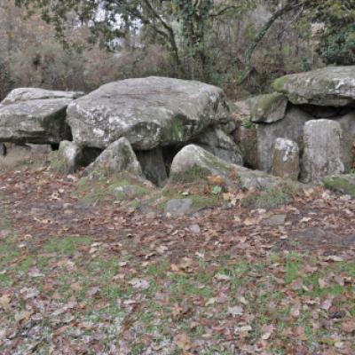 Dsc 0161 dolmen de kermarquer 01