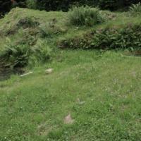 Dsc 1297 jabreilles les bordes fontaines celtiques